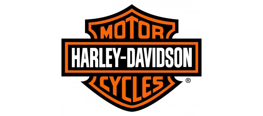 Pelacrash Harley Davidson